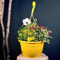Blomster trafiklys 25cm hvid