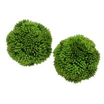 Allium kugle 5cm grøn 4stk