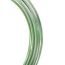 Aluminiumstråd 2mm 100g mintgrøn