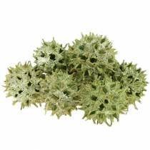 Søde tyggegummikegler grøn frostet 250g
