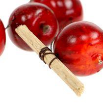Æblekransrød L 110cm