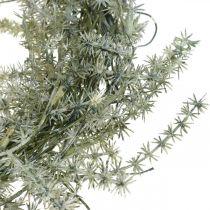 Kunstig asparges krans hvid, grå Dekorativ asparges krans Ø20cm