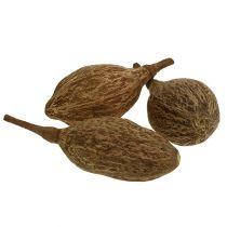Baobab frugt skrællet 15 cm - 20 cm naturlige 5stk