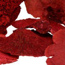 Træsvamp rød 1 kg