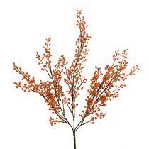 Bærgren orange L48cm 1p