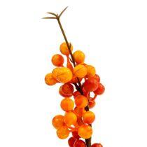 Bærgren orange L 30 cm 12stk