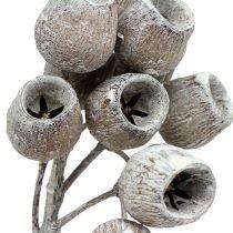 Bellgum kvist 5-7 hvidvasket 20stk