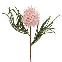 Blomstergren skum lyserød / grøn 65 cm