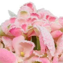 Hortensia lyserød 33 cm 4stk