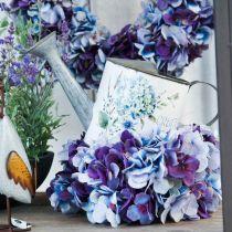 Blomsterpotte vandkande hortensia haven dekoration planter 15cm
