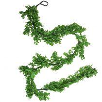 Boxwood garland green 180cm