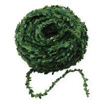 Kasse kransegrøn 15m