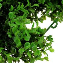 Boxwood kransgrøn L170cm
