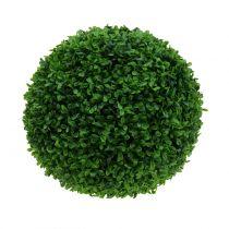 Boxwood kugle grøn Ø30cm