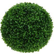 Boksvedkuglegrøn Ø55cm