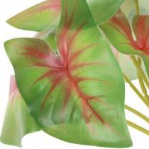Kunstig Kaladie seks-blad grøn / lyserød