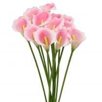 Calla dekorativ blomsterrosa 57 cm 12stk