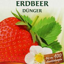 Chrysal jordbærgødning 1 kg