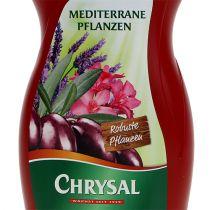 Chrysal Middelhavsplanter 500 ml