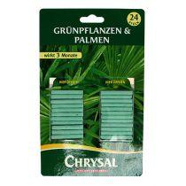 Chrysal gødning stikker grønne planter (24 stk.)