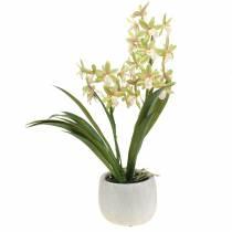Orchid Cymbidium Green i en gryde Kunstig H46cm