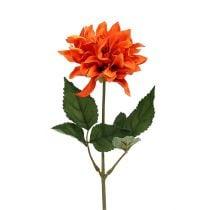 Dahlia Orange 28cm 4stk