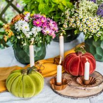 Dekorativ græskarstrømning blandes orange, grøn, rød efterårsdekoration 16cm 3stk
