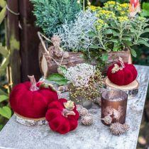 Deco græskarrød efterårsdekoration polyresin 15 × 12cm
