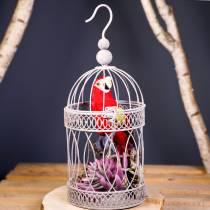 Dekorativ papegøje rød 44cm