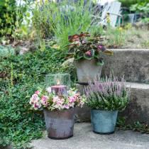 Dekorativ plantepotte med blade zink metallisk grå, orange, brun Ø17cm H14.5cm 3stk