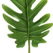 Dekorative ark Philodendron Grøn W11cm L34cm 6stk