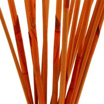 Dekorative pinde Elephant Reed Orange 20stk