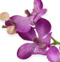 Orchid purpur 38cm