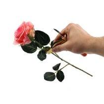 Rose tornfjerner med kniv