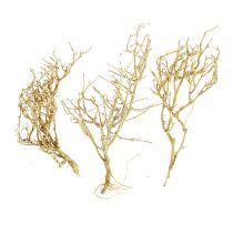 Tørt træ 500 g bleget