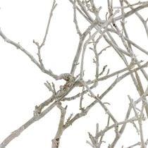 Tørt træ hvidt vasket 500g