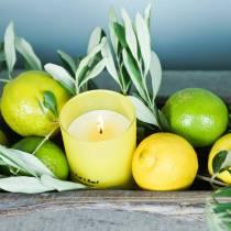Duftlys i et glas citron og basilikum Ø7cm