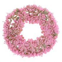 Echeveria krans lyserød Ø18cm 4stk
