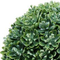 Echeveria kugle kunstgrøn Ø18cm