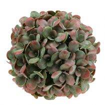 Echeveria-kugle kunstgrøn, rød Ø22cm