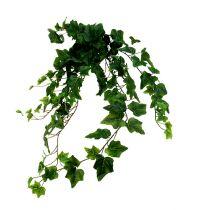Ivy hæng kunstgrøn L80cm