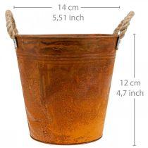 Plantepotte, efterårsdekoration, metalbeholder med patina Ø14cm H12cm