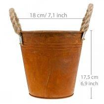 Plantegryde med patina, metalbeholder, efterårsdekoration Ø18cm H17,5cm
