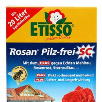 Etisso Rosan champignonfri SC 50ml