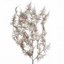 Kunstig bregne brun kunstig bregne efterårsdekoration 72cm