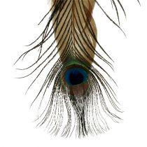 Fjederbøjle påfuglefjer 34cm 3stk