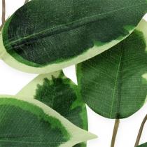 Dekorativ gren Ficus gren 58cm