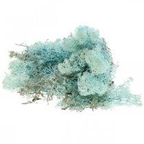 Dekorativ mos lyseblå akvamarin rensdyr mos håndværk mos 400g