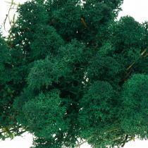Deko-Mos grøn rensemos bevarer mos til kunsthåndværk 400g