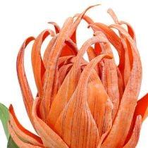 Skumblomst orange 12cm L30cm 1p
